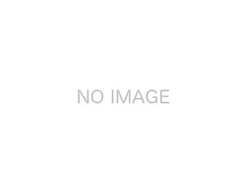 入間市 西武池袋線入間市駅の貸工場・貸倉庫画像(4)